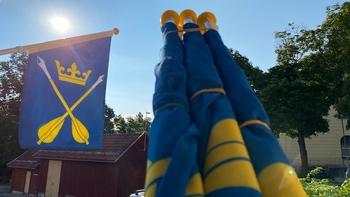 "Façade flag - Dalarna's provincial coat of arms ""Dalarna Arrows"""